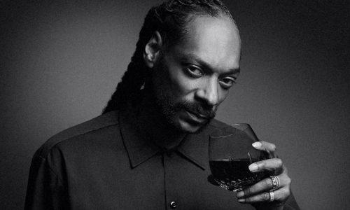 poster-Snoop19Crimes2